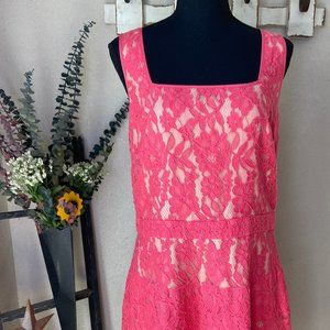 NWT The Limited Pink Lace A-Line Dress 12